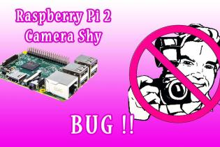raspberry_pi_2_camera_shy_bug
